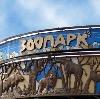 Зоопарки в Коркино